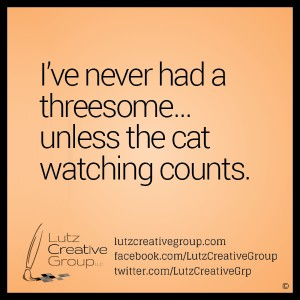 I've never had a threesome... unless the cat watching counts.